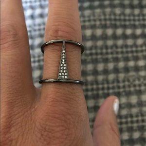 Seine Ring